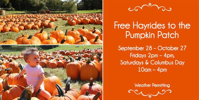 free hayrides
